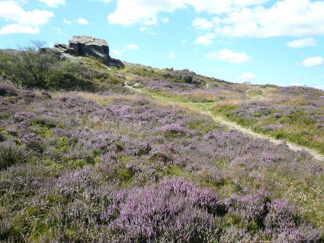 Ashover Rock (Farhill) - Surrounded by Heather