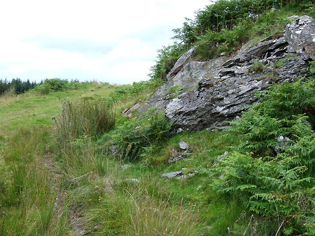 Outcrop and Track, Cerrig Ysgyfarnog, Cwm Doethie Fawr, Ceredigion