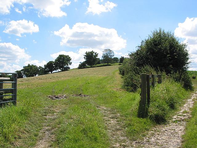 Lower slopes of Eastnor Hill