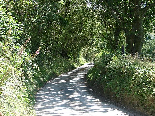 Lane to Cwm-y-Ffynnon
