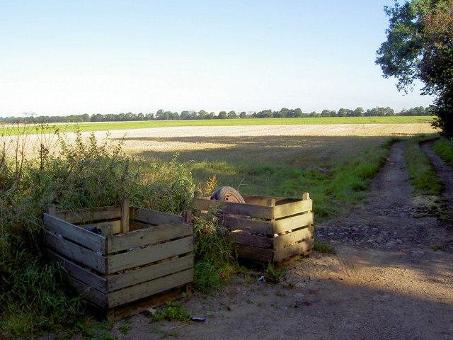 Field track off gate wood lane.