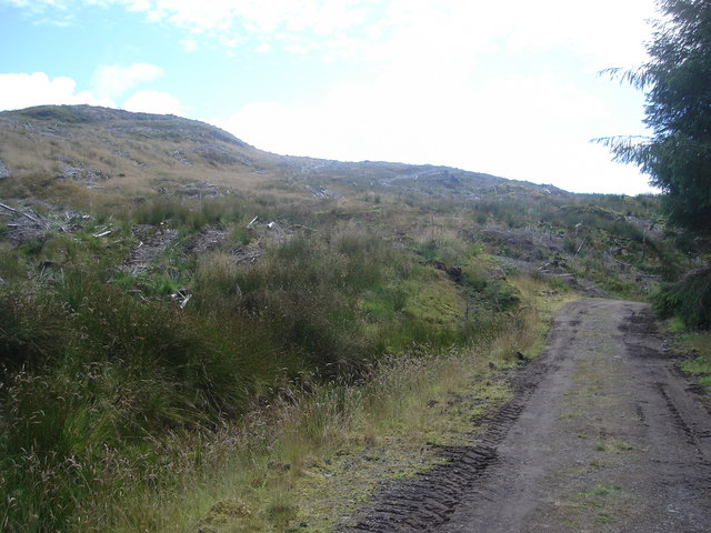 Forest track beside clear felled hillside northwest of the Oude reservoir