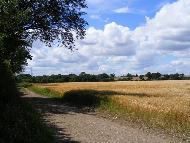 Track from Little Offley to Telegraph Hill