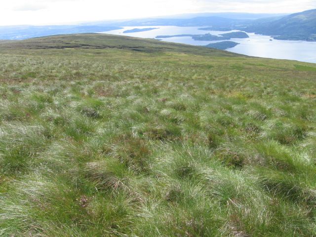 Beinn Uird hillside