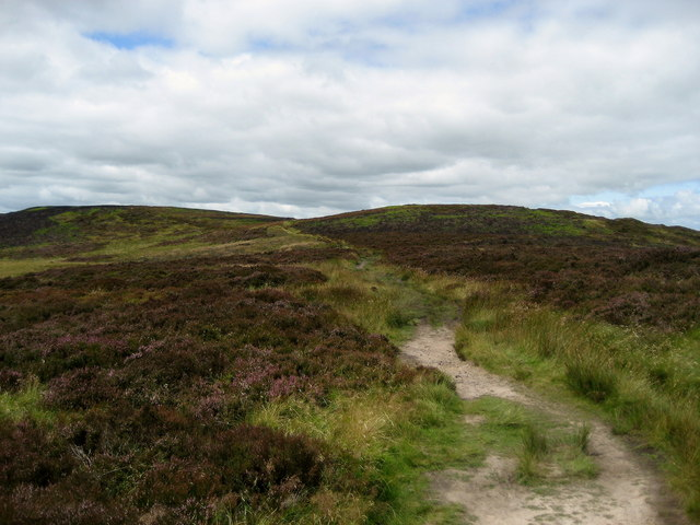 Pennine Way east of Pinhaw Beacon