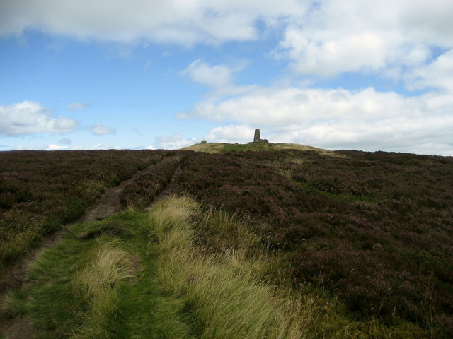 Trig Point on Pinhaw Beacon.