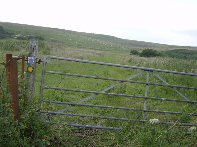 Entering St. Catherine's Down