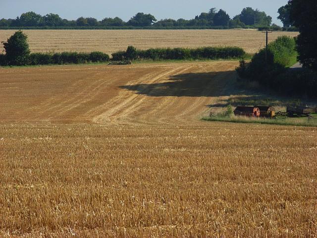 Farmland, Over Wallop
