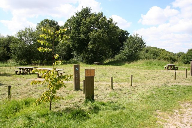 Chambers Plantation picnic area