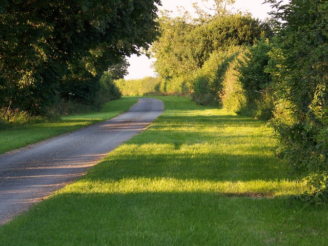 Evening light along the byway towards Homington