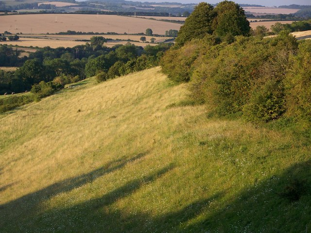 Hillside above Homington