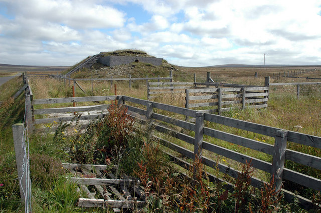 Sheep pens and wartime bunker