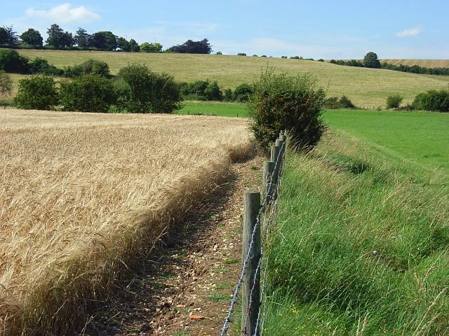 Farmland, Salisbury