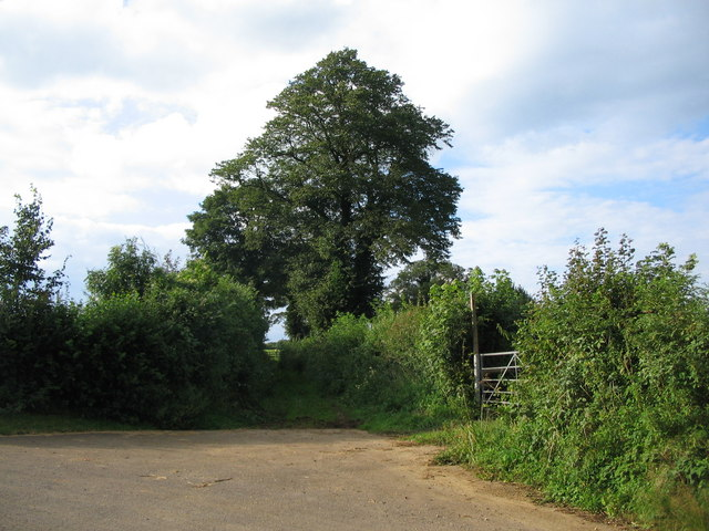 Footpath to Upton Noble