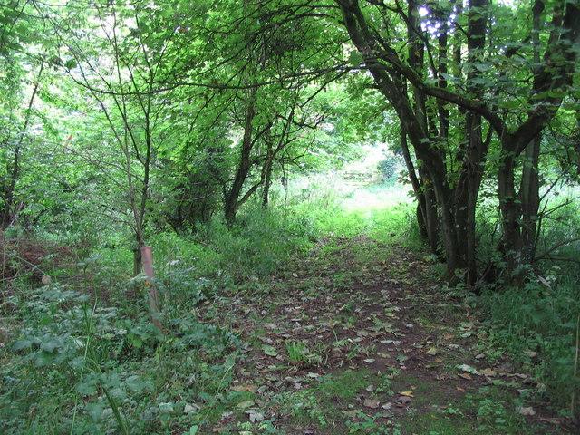 Footpath from Henley Grove Farm