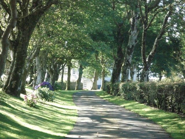 Driveway to Lochturffin House