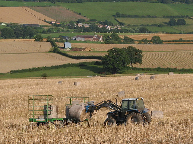 Rounding up the bales
