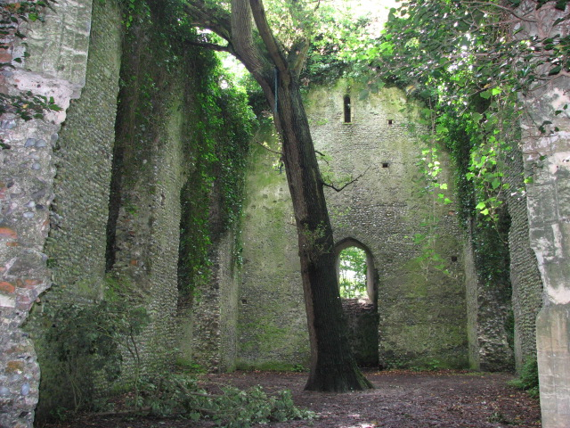 The ruin of St Mary's church, East Somerton