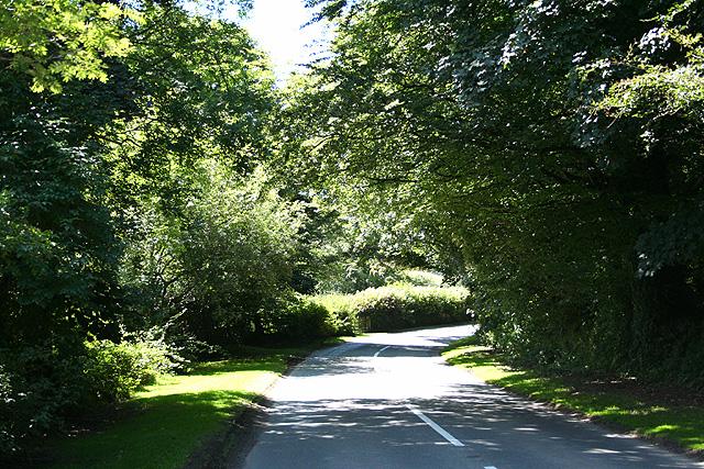 Exford: the road to Simonsbath