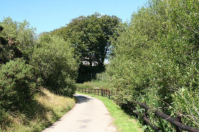 Exmoor: lane to kennels