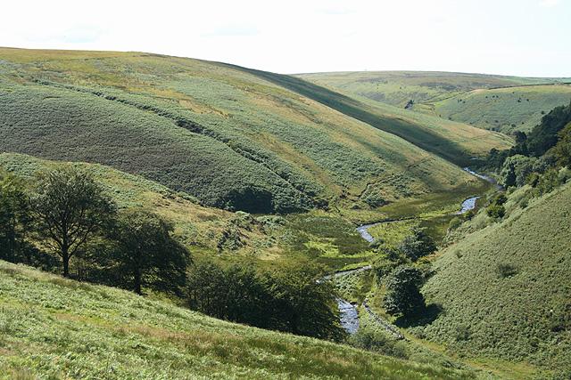 Exmoor: river Barle