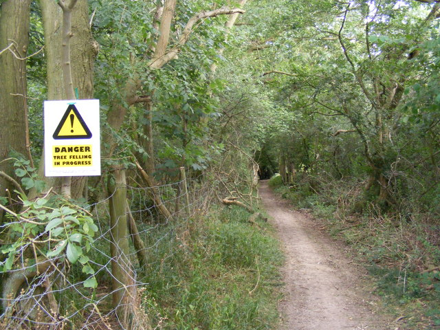 Footpath from Preston enters woods near Lady Grove