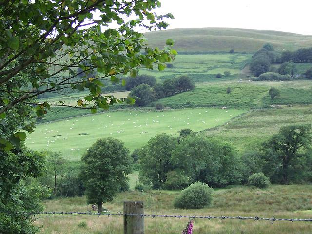 Farmland and Esgair Hir, Ceredigion