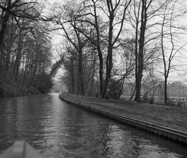 Llangollen Canal alongside Blake Mere