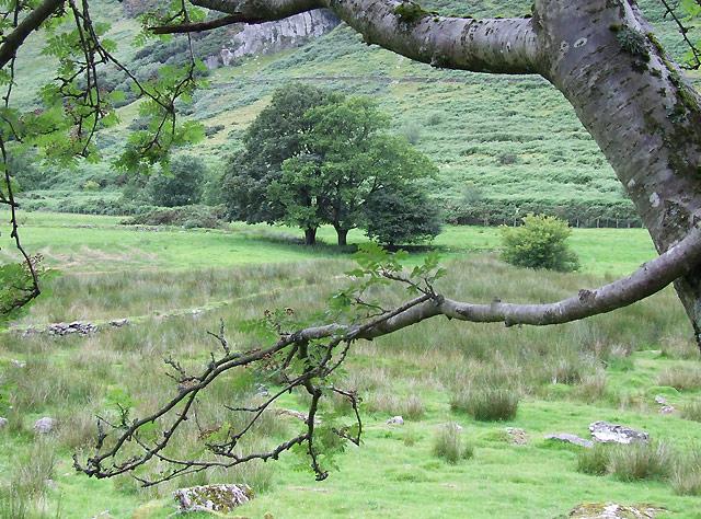 Cwm Brefi below Craig y Lefel, Ceredigion