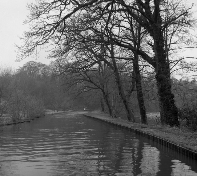 The Llangollen Canal alongside Blake Mere (2)