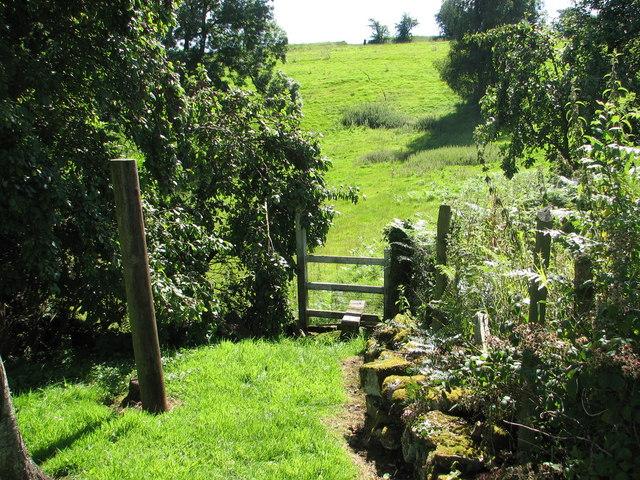 St Briavels - Stile on Slade Bottom footpath