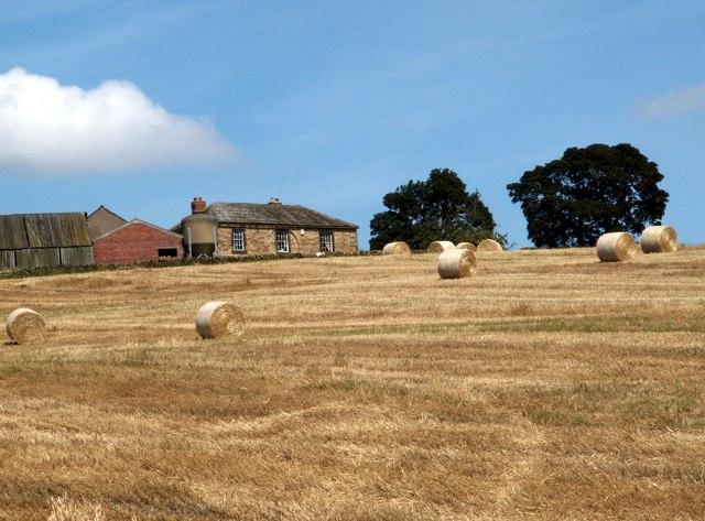 Champany Hill Farm