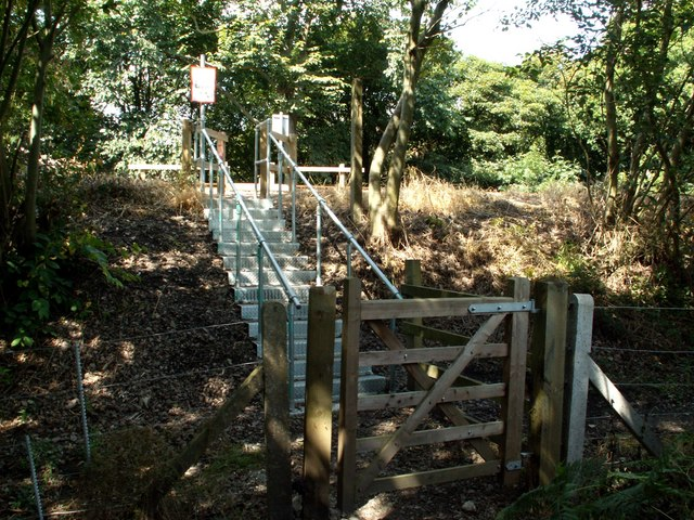 Steps at the railway pedestrian crossing from Hall Royd