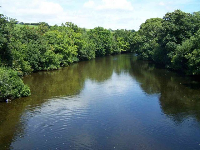 River Dart From Staverton Bridge