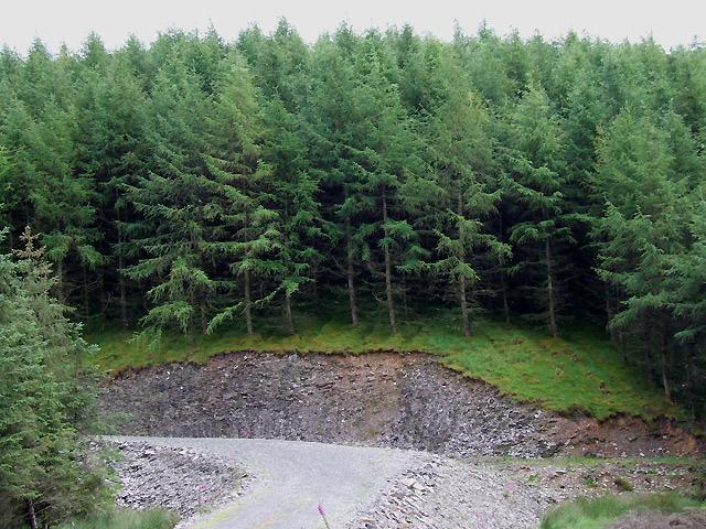 Elenydd Soil Profile, near Bronbyrfe, Ceredigion