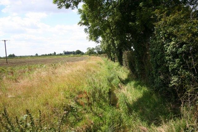 Minting farmland