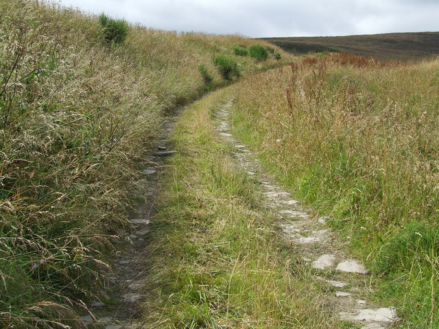 Track beyond Nether Handwick