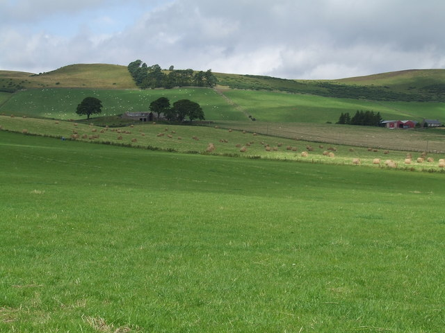 Fields at Nether Handwick