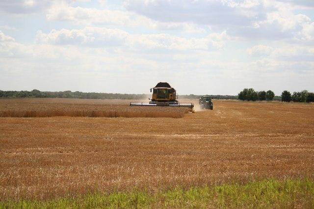 Gautby Harvest