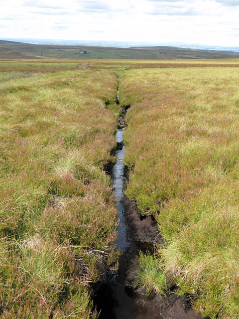Drainage channel on Nookton Edge
