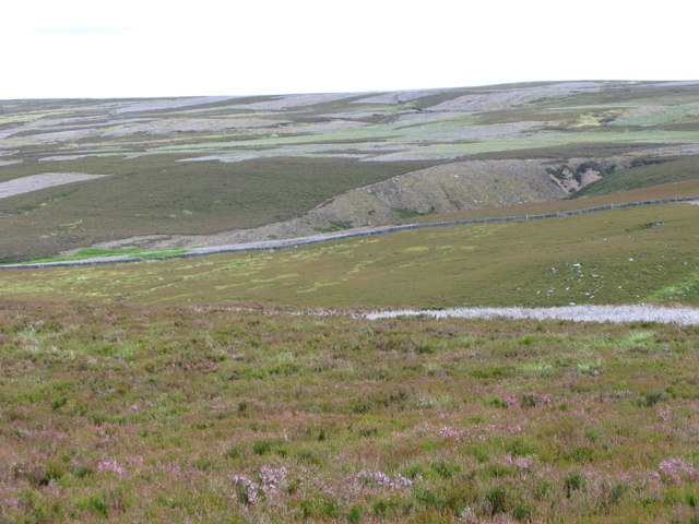 The headwaters of Nookton Burn