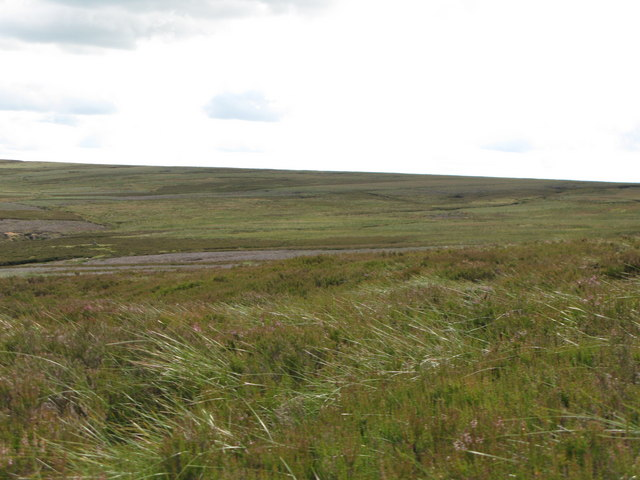 The headwaters of the Nookton Burn (2)