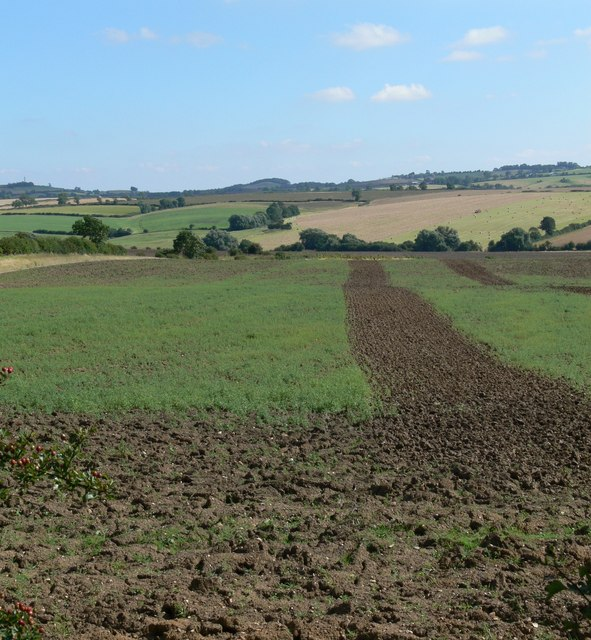 Farmland near John O'Gaunt