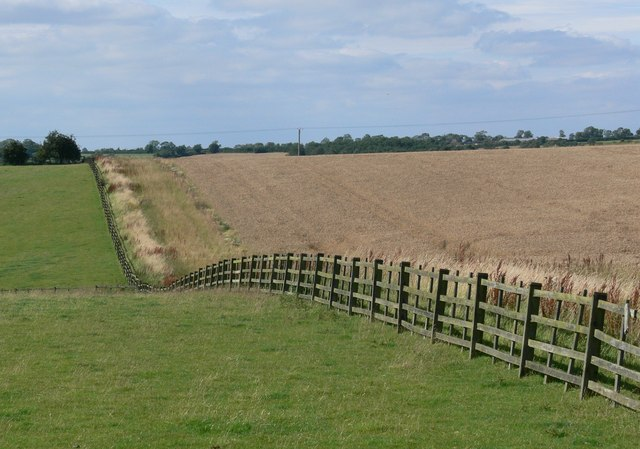 Fields near John O'Gaunt