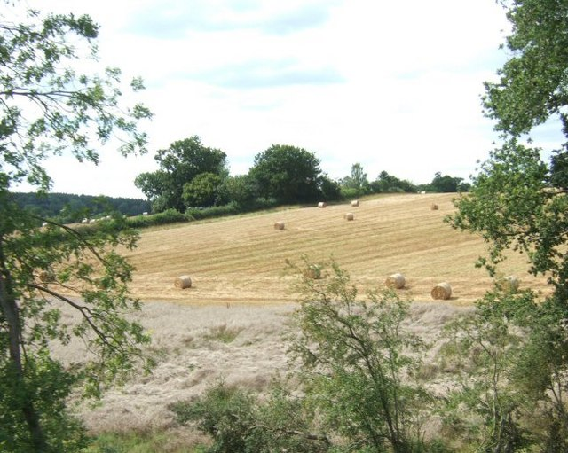 Field after Baling