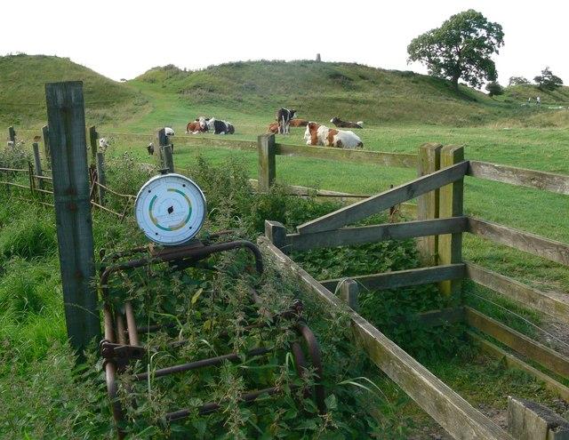 Weighpen at Burrough Hill