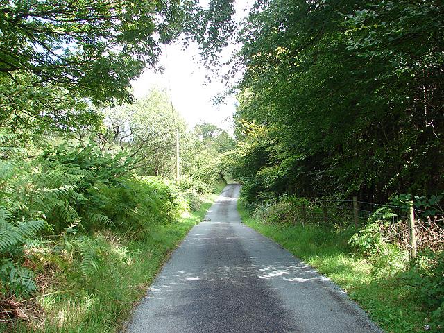 Lane through Cwm Clegyrnant