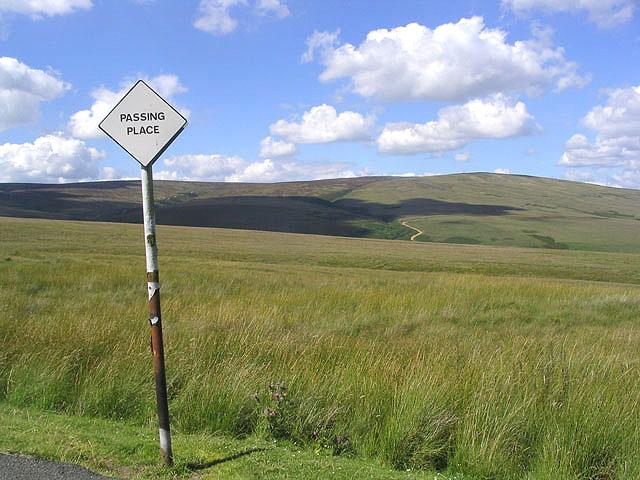 Rough grazing north of Bedda Hill