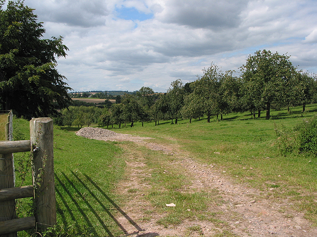 Orchard at Baysham