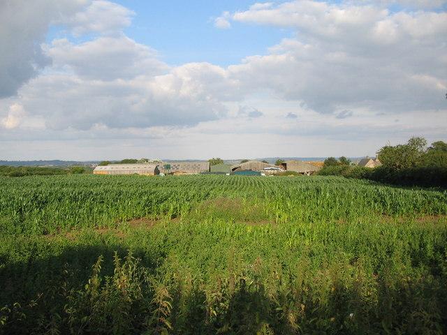 Elliscombe Farm
